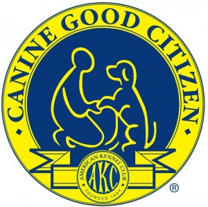 An Overview of the AKC Canine Good Citizen Test | Spring Forth Dog Blog