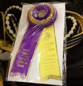 Double Qualifying Score Rosette from Westminster Masters Agility Championship